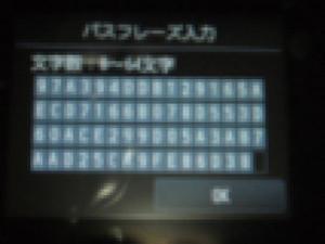 P5080973v560